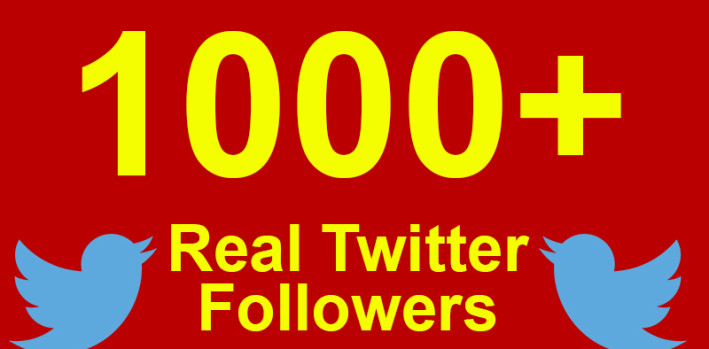 I will give 1000+ real twitter follower