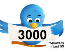 I will give you 2000 twitter follower